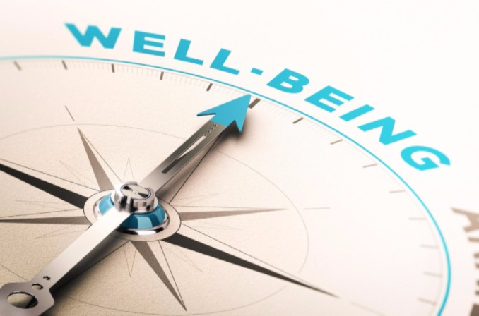 Wellbeing compass concept: MaxFilings Business Management Blog